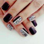 Cebra+Negro