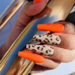 Leopardo + Naranja